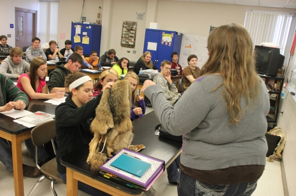 DDHS students in the Wisconsin Natural Resources Certifications course look at a coyote fur while Wisconsin DNR Assistant Furbearer Ecologist Geriann Albers talks about the conservation of the state's predatory animals.